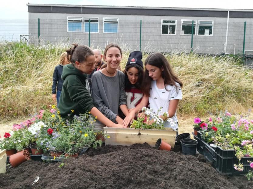 cursos-idiomas-extranjero-kilkenny-jardineria